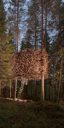 The height of nature: Swedish Treehotel