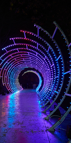 Helen Marriage on immersing Durham in light-based installations at Lumiere festival