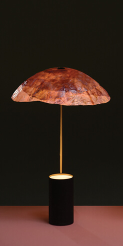 Designers Nir Meiri and Vaidehi Thakkar make lamps from red cabbage leaves