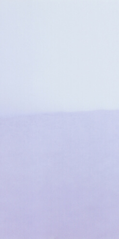 French photographer Vasantha Yogananthan on self-isolation and still life