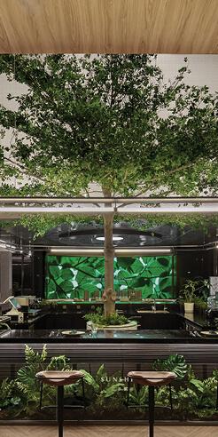 Karv One Design emulates a forest after a shower inside Afterain restaurant
