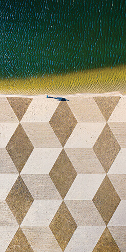 Nico Laan's sand paintings are a play with nature to explore its beauty