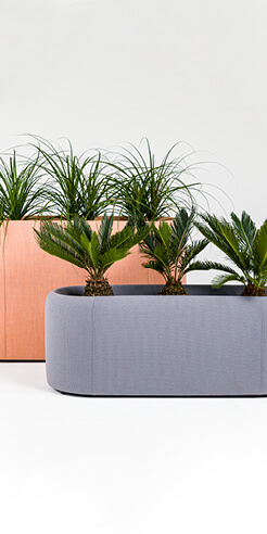 BuzziPlanter: the sound controlling spatial divider for offices by BuzziSpace