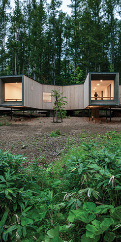 Florian Busch Architects' House in the Forest branches out in a meandering form