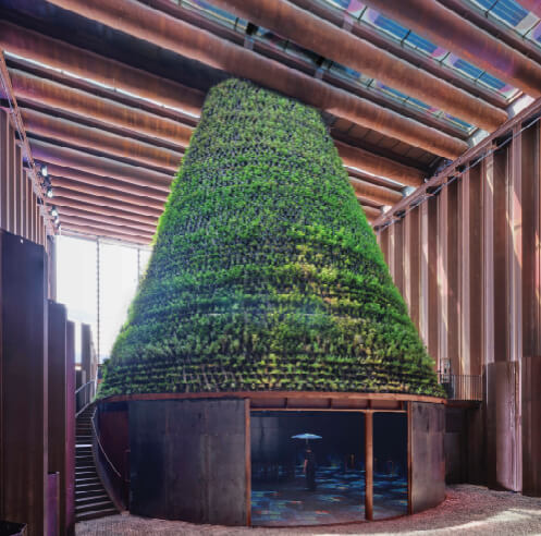 Watering hope in a desert: the blooming of the Dutch Biotope at Expo 2020 Dubai