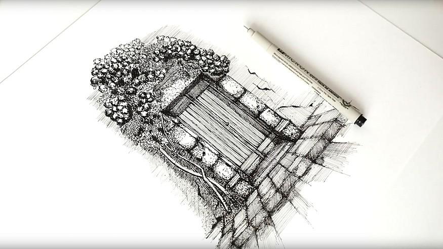 Spanish bougainvillea – a drawing tutorial with Dan Hogman