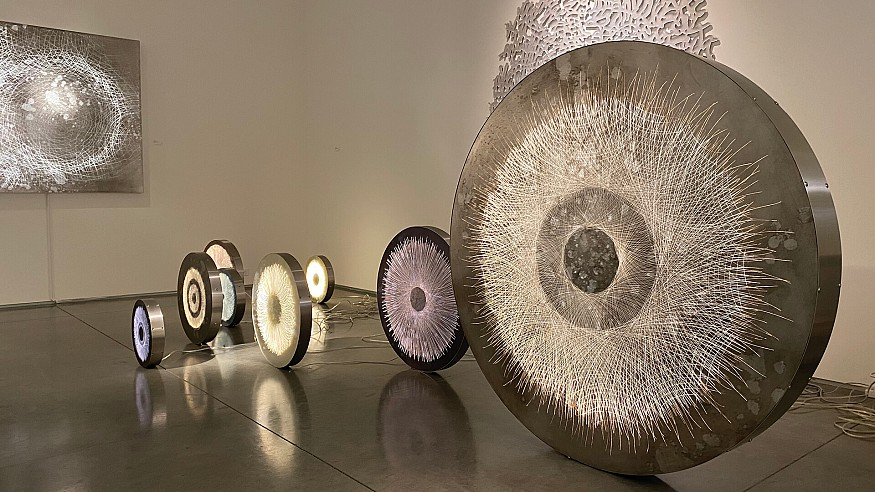 Claudia Meyer on the convergence of nature and technology in her art practice