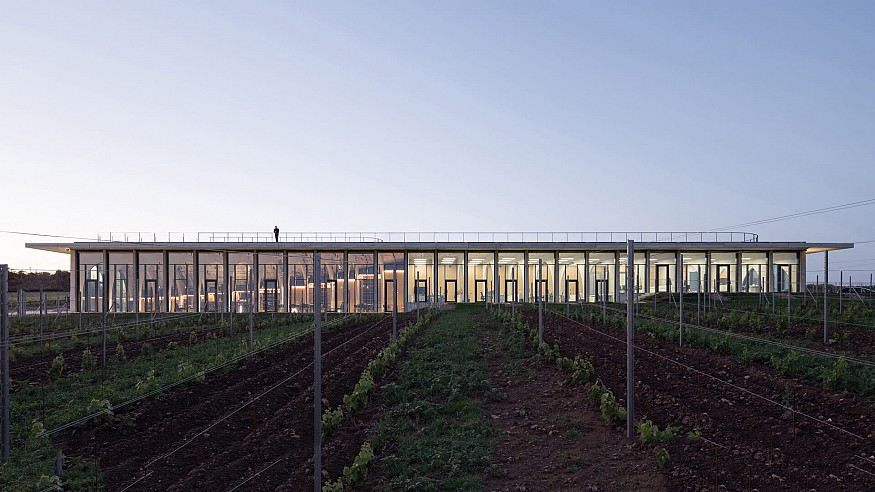 CHYBIK+KRISTOF's Lahofer Winery reminisces traditional Czech wine cellars