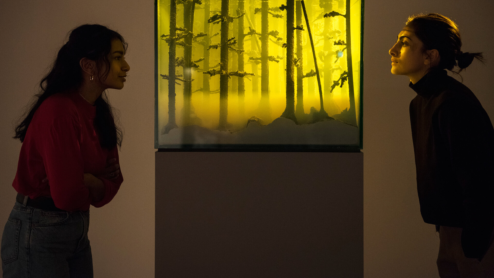 'And Then the World Changed Colour: Breathing Yellow' by Mariele Neudecker, on display at Hayward Gallery | Among The Trees | Hayward Gallery | STIRworld