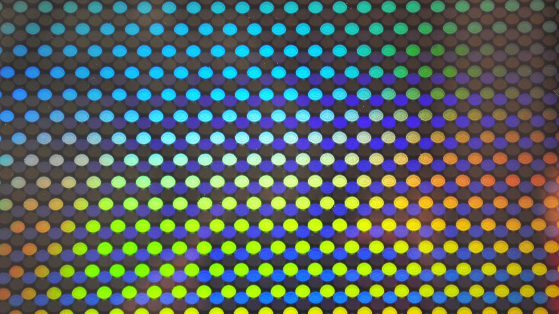 Dieter Jung swings between optics and kinetics in this hi-tech driven show