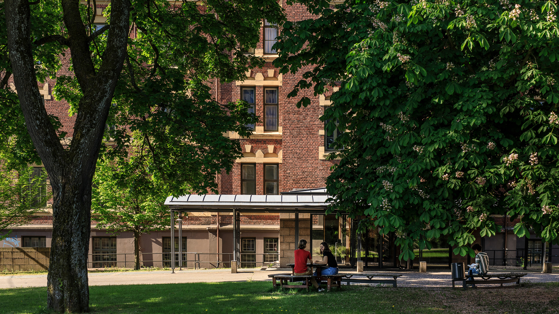 Oslo Biennale – From private to public