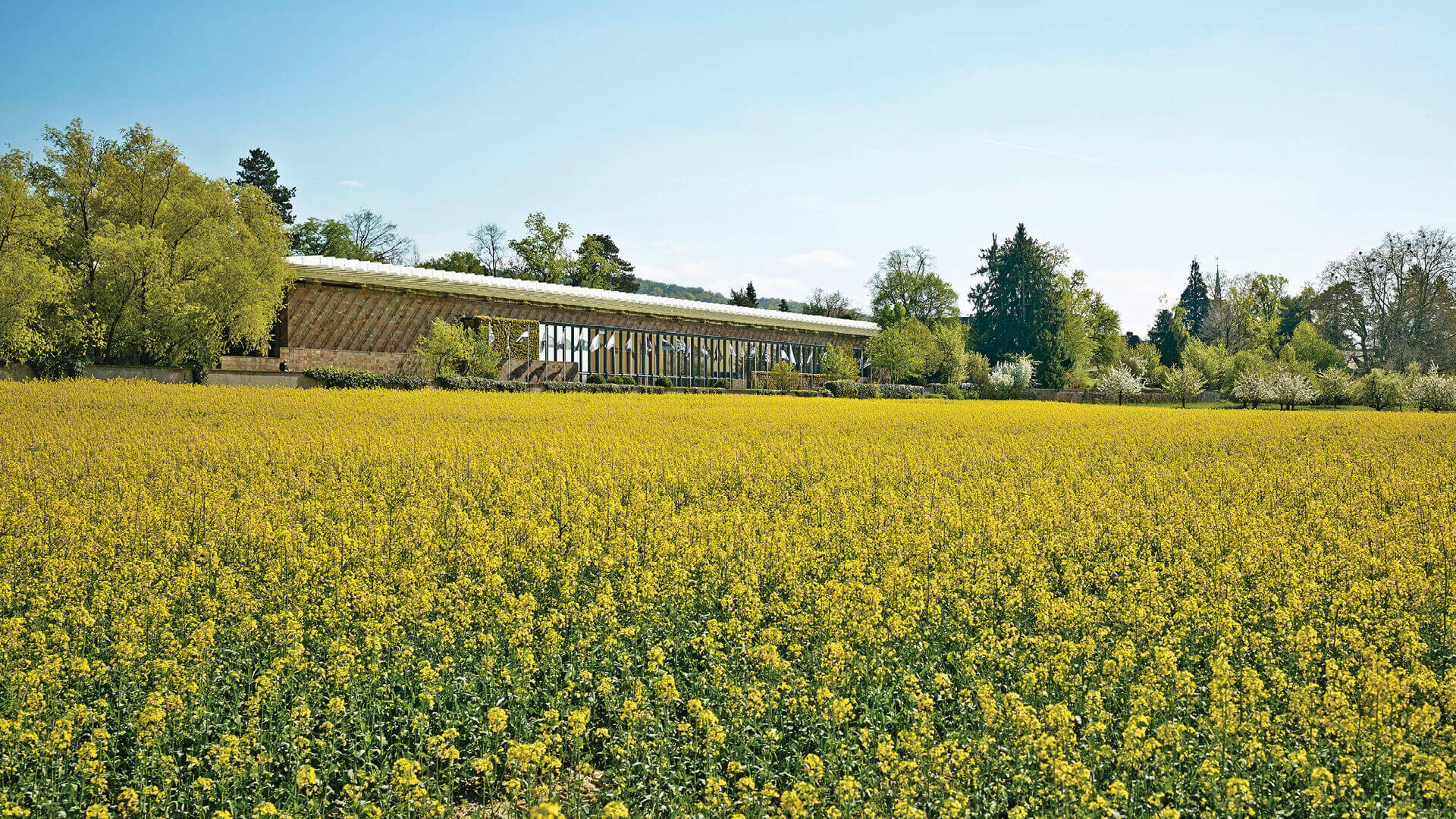 Private Museums of the World: Fondation Beyeler
