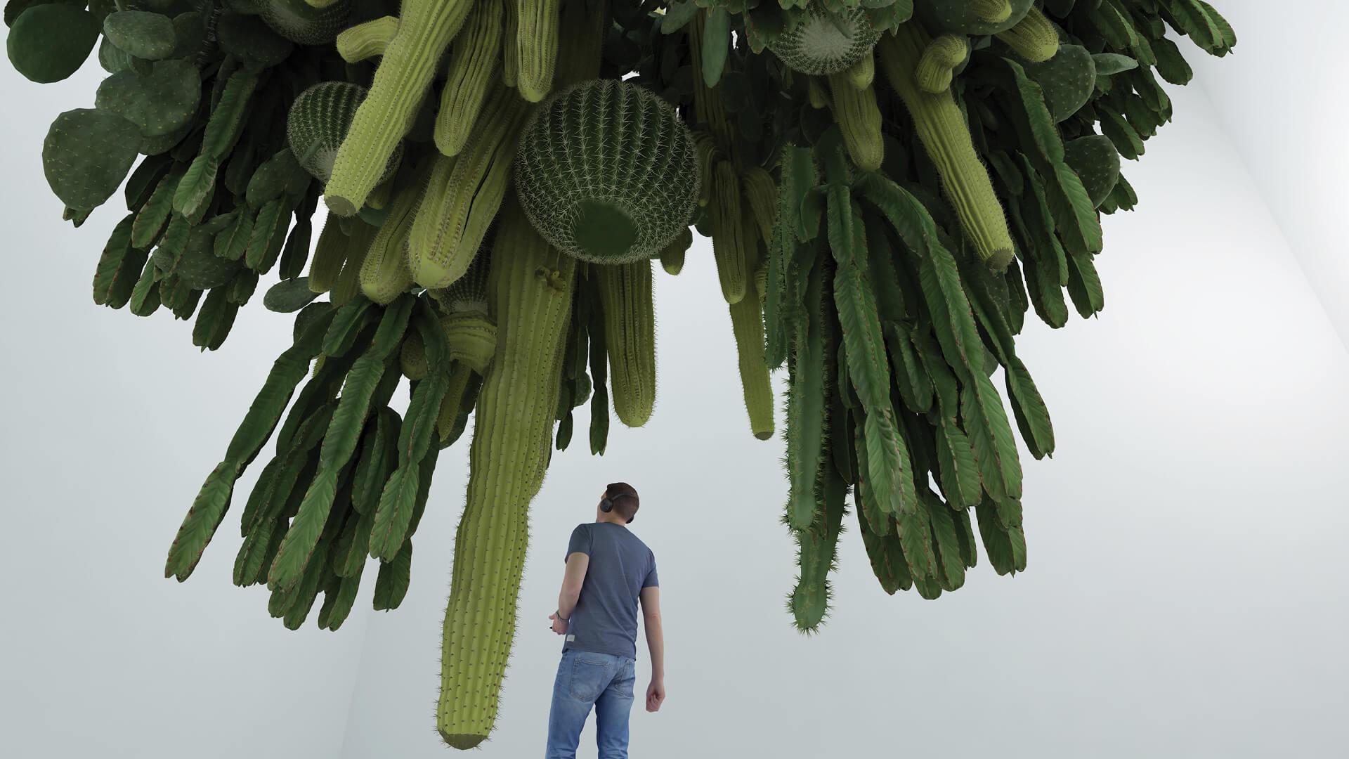 Inverted Cactus | Cyril Lancelin | STIRworld