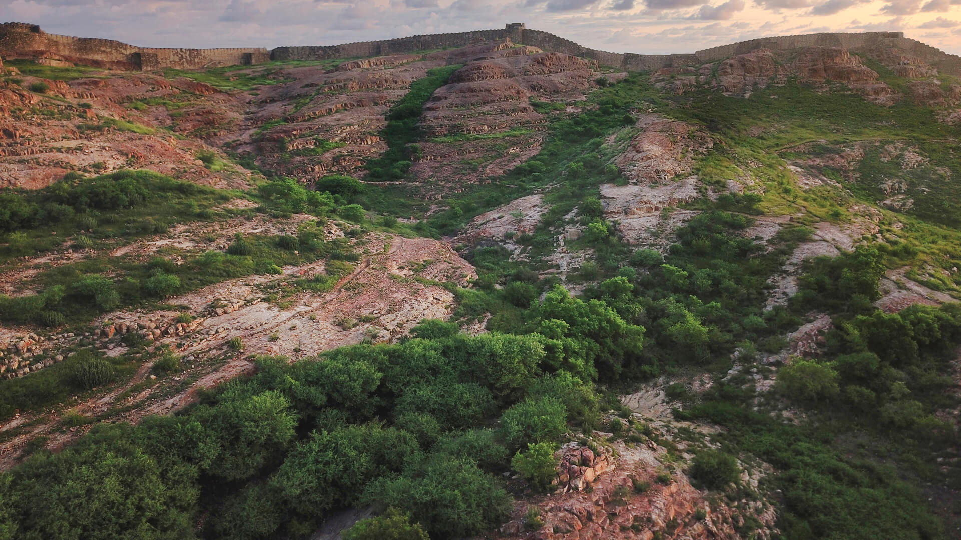 Rehabilitating Ecosystems: Global projects that reflect the UN's 2030 Agenda
