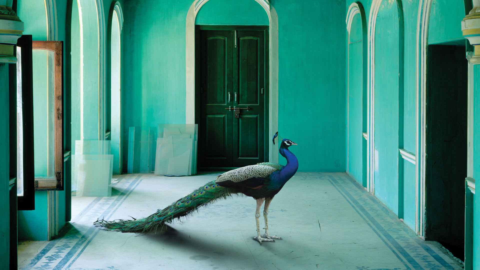 The Queen's Room, Zenana, Udaipur City Palace, India Song | Karen Knorr | STIRWorld