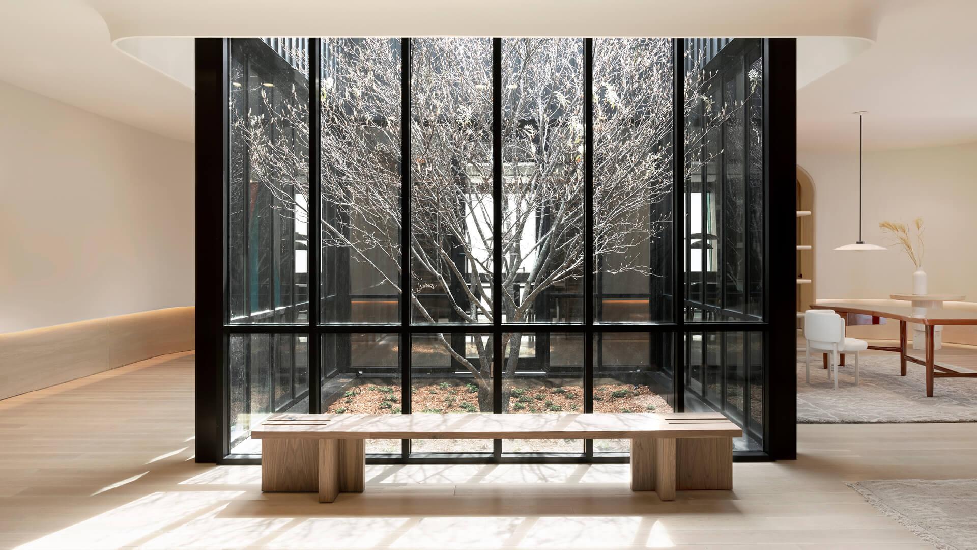 Zibi House designed around the Shadblow tree in its courtyard | Zibi House by Studio Paolo Ferrari | STIRworld