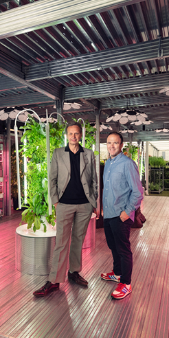 Tom Dixon and IKEA explore urban gardening at the Chelsea Flower Show