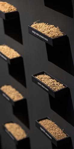 Madrid's Thyssen-Bornemisza Museum showcases artist Amar Kanwar's works