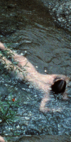 Belgium's Middleheim Museum exhibits Ana Mendieta's 'earth-body' artworks