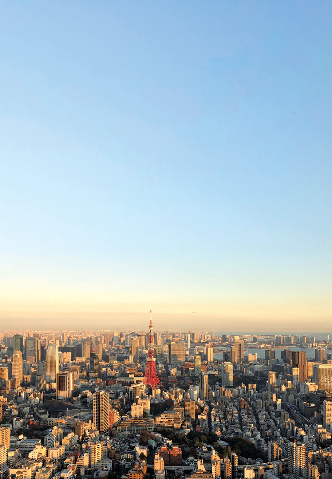 Tokyo Skyline | Dtours India | Japan | STIR