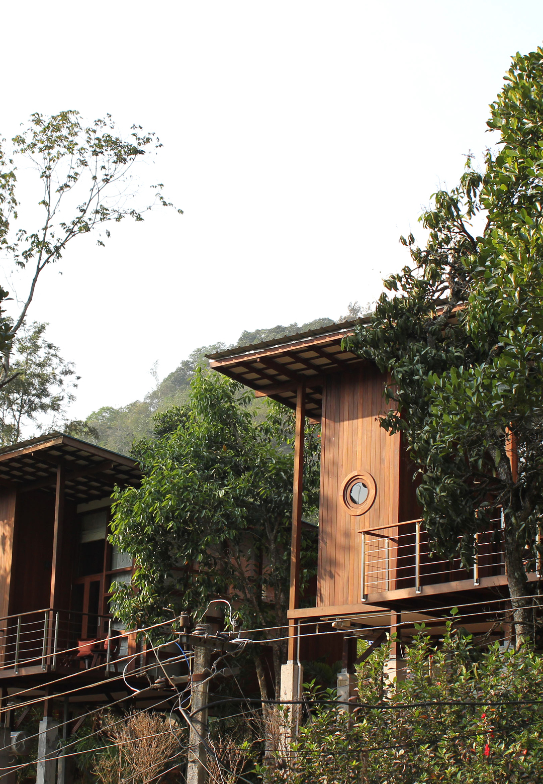 The Cabins set in the natural context responding to the surroundings | Cardomom Club| Kumar La Noce | Kerala | India | STIRworld