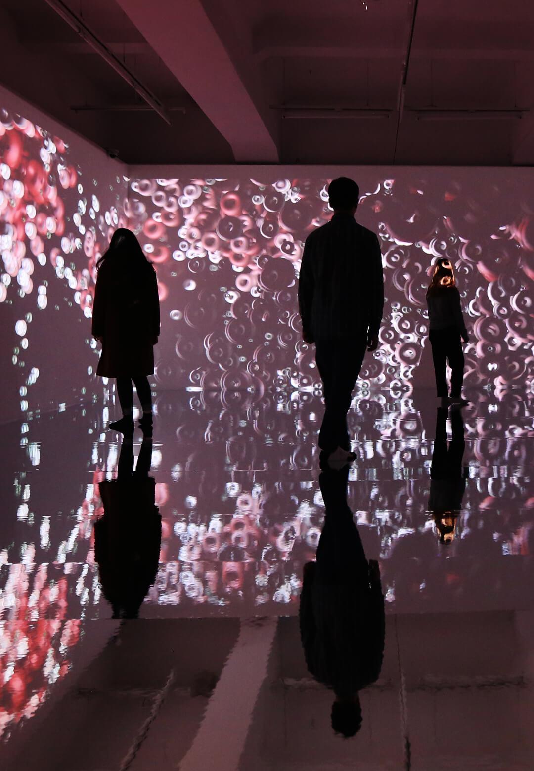 Yiyun Kang, Continuum, Installation Image 1| Continuum | Yiyun Kang | STIRworld