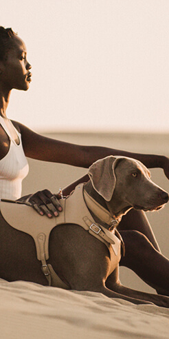 American luxury petwear brand Pagerie launches debut 'Sahara' collection
