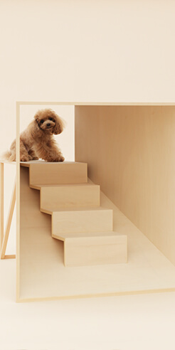 'Architecture for Dogs' to showcase pet-scaled designs at Japan House London