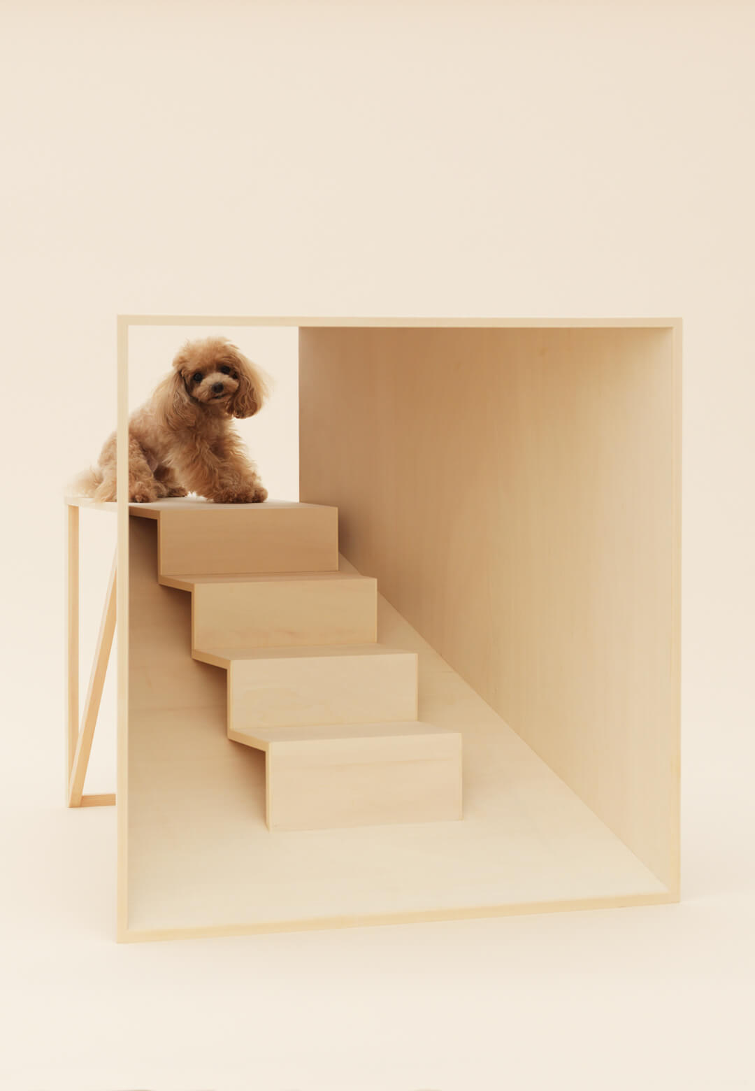 D-tunnel by Kenya Hara for Teacup Poodle | Architecture for Dogs | Hara Kenya | STIRworld