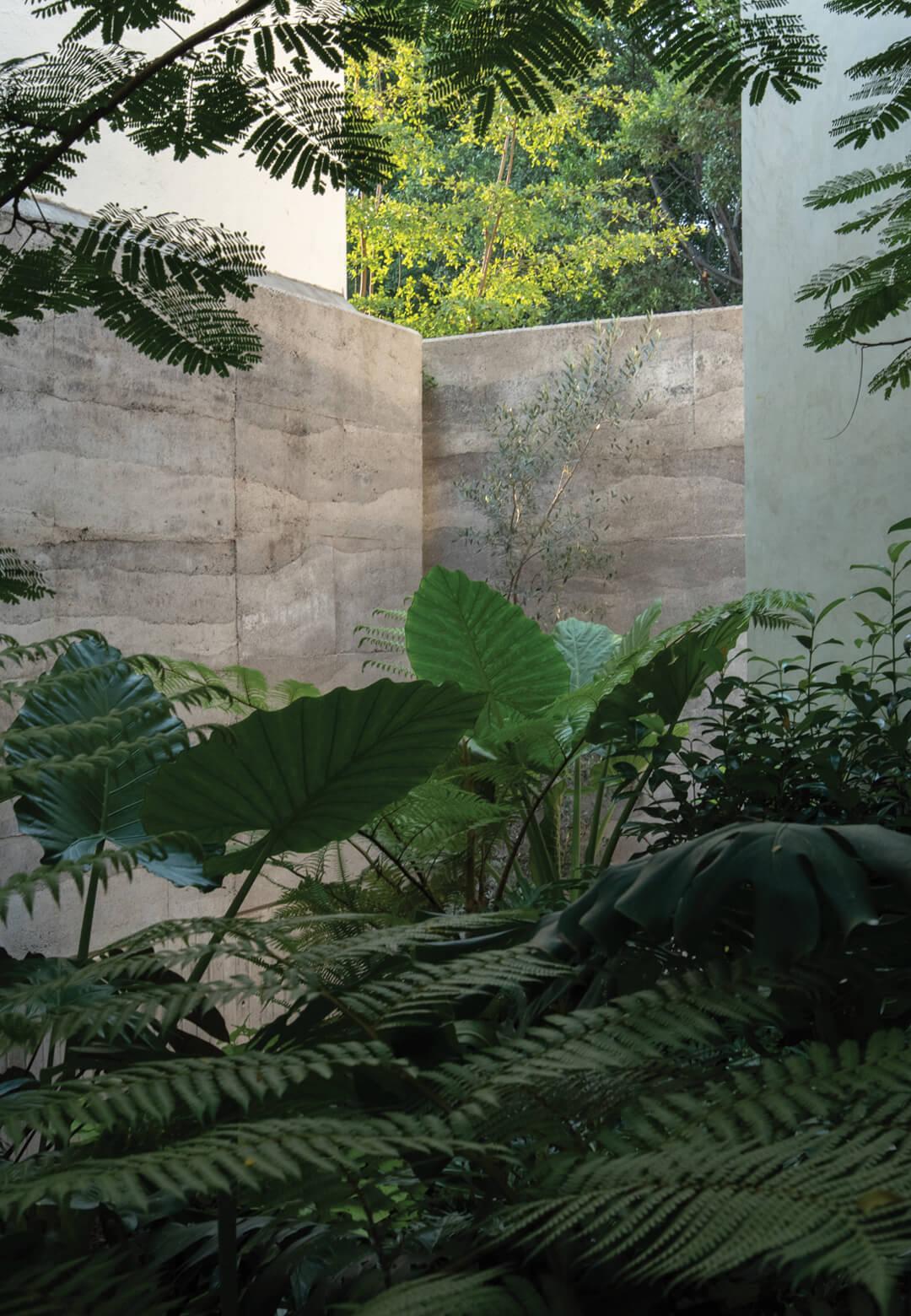 Casa Duraznos in Mexico designed by V Taller draws inspiration from hacienda architecture | Casa Duraznos designed by V Taller | STIRworld
