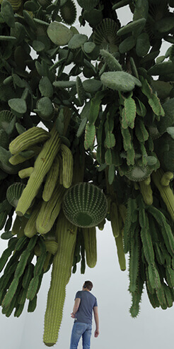 Cyril Lancelin's cacti installations muse the theme of nature and artificial landscape