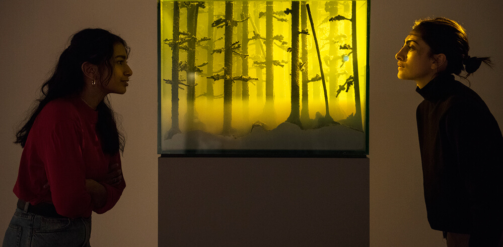 Hayward Gallery brings 38 artists together for exhibition 'Among the Trees' in London