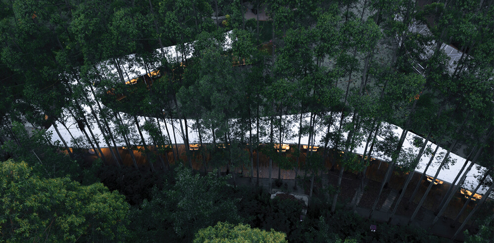 MUDA-Architects' Garden Hotpot Restaurant snakes through a eucalyptus forest in China