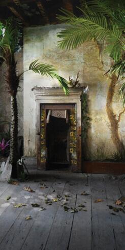 Suzanne Moxhay's images reinvigorate a sense of regeneration despite being dark