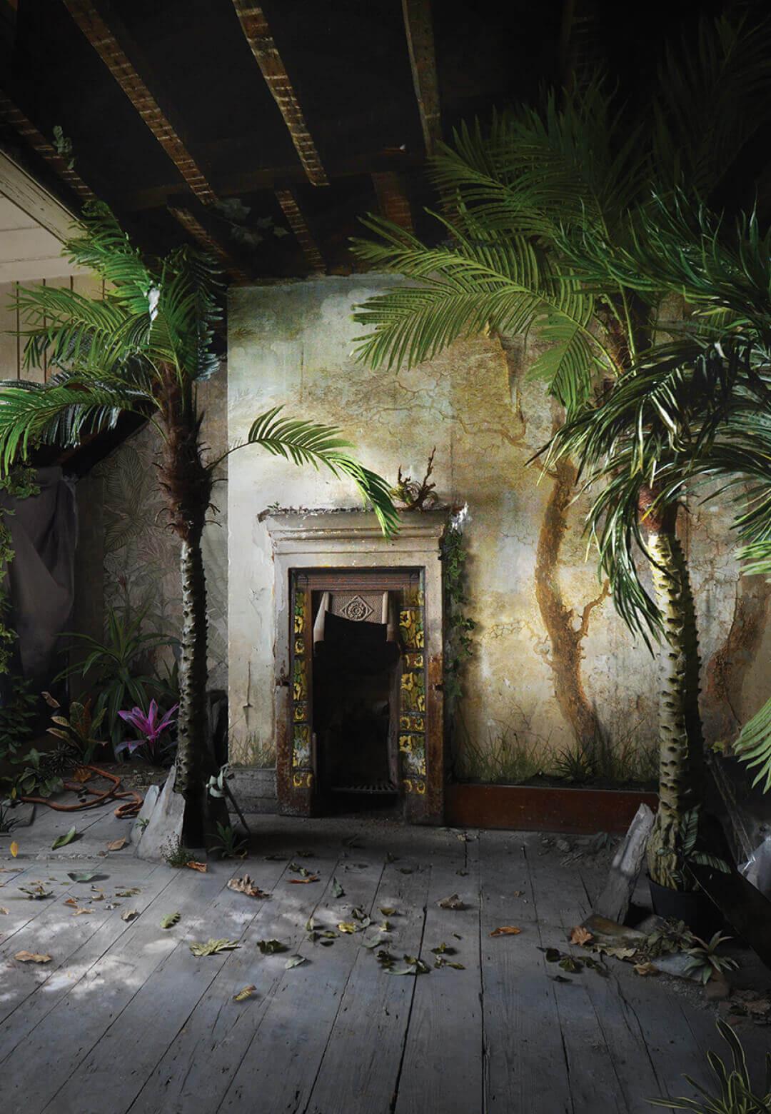 Palm   Suzanne Moxhay  STIRworld