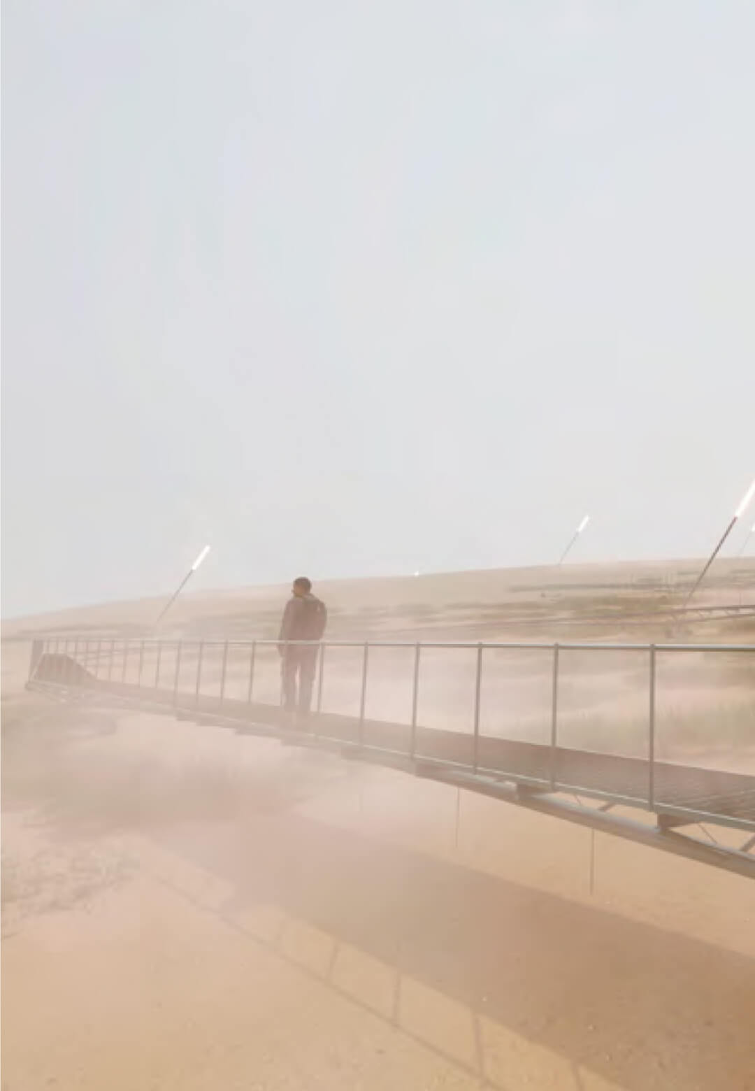 Tillandsia and the foggy walkway | Parque Pachacamac: The Mantle and the Plinth | Alfaro Lachhwani McKay | STIRworld