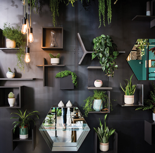 Uncommon brings holistic design solutions and well-being to London's workspaces