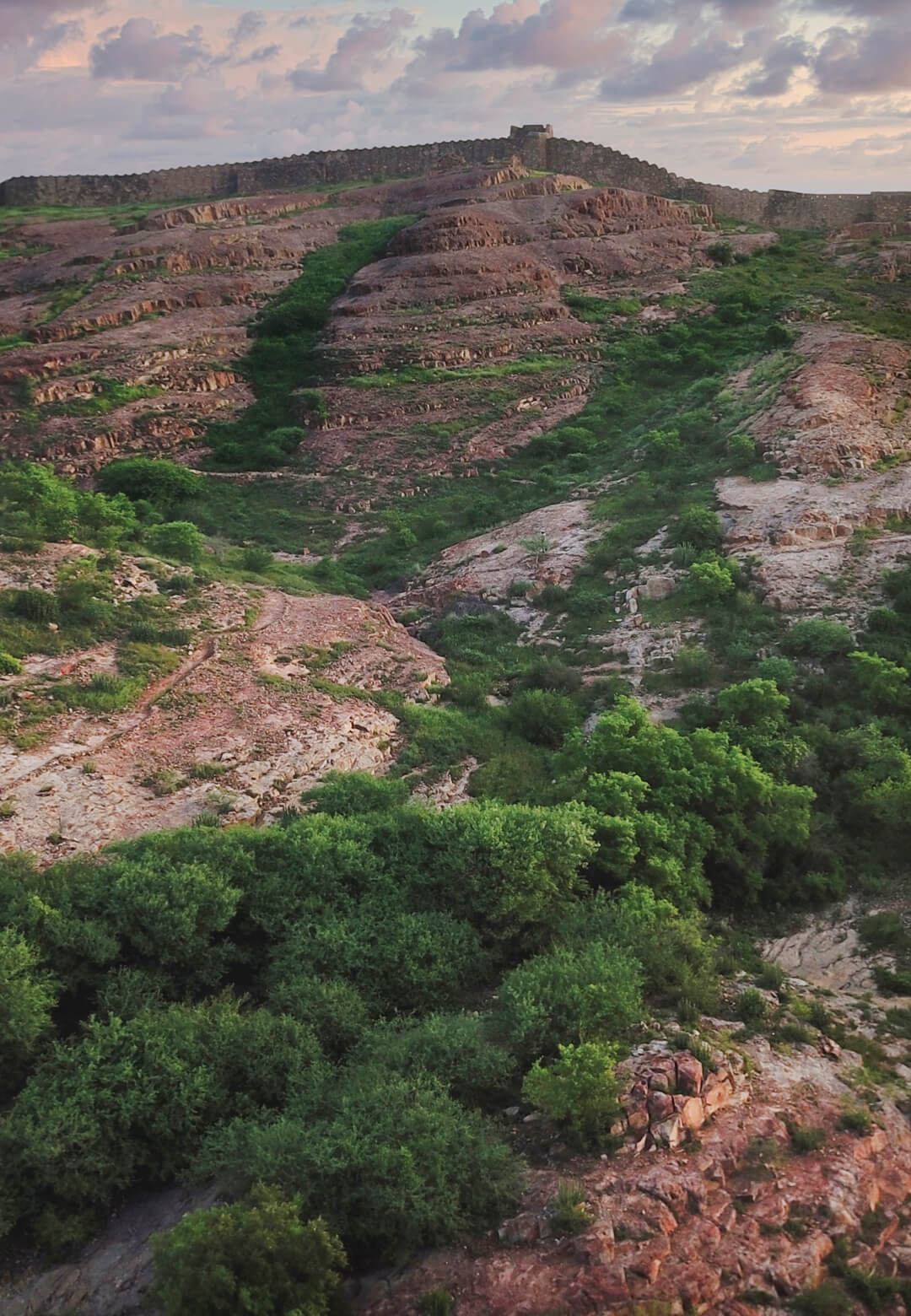 Rao Jodha Desert Rock Park (pictured): This year's World Environment Day, with its theme of 'Ecosystem Restoration' will also signify the start of the UN Decade on Restoration   STIRworld