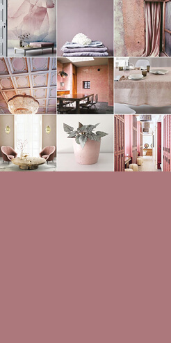 Colour Chronicles: The power of pink