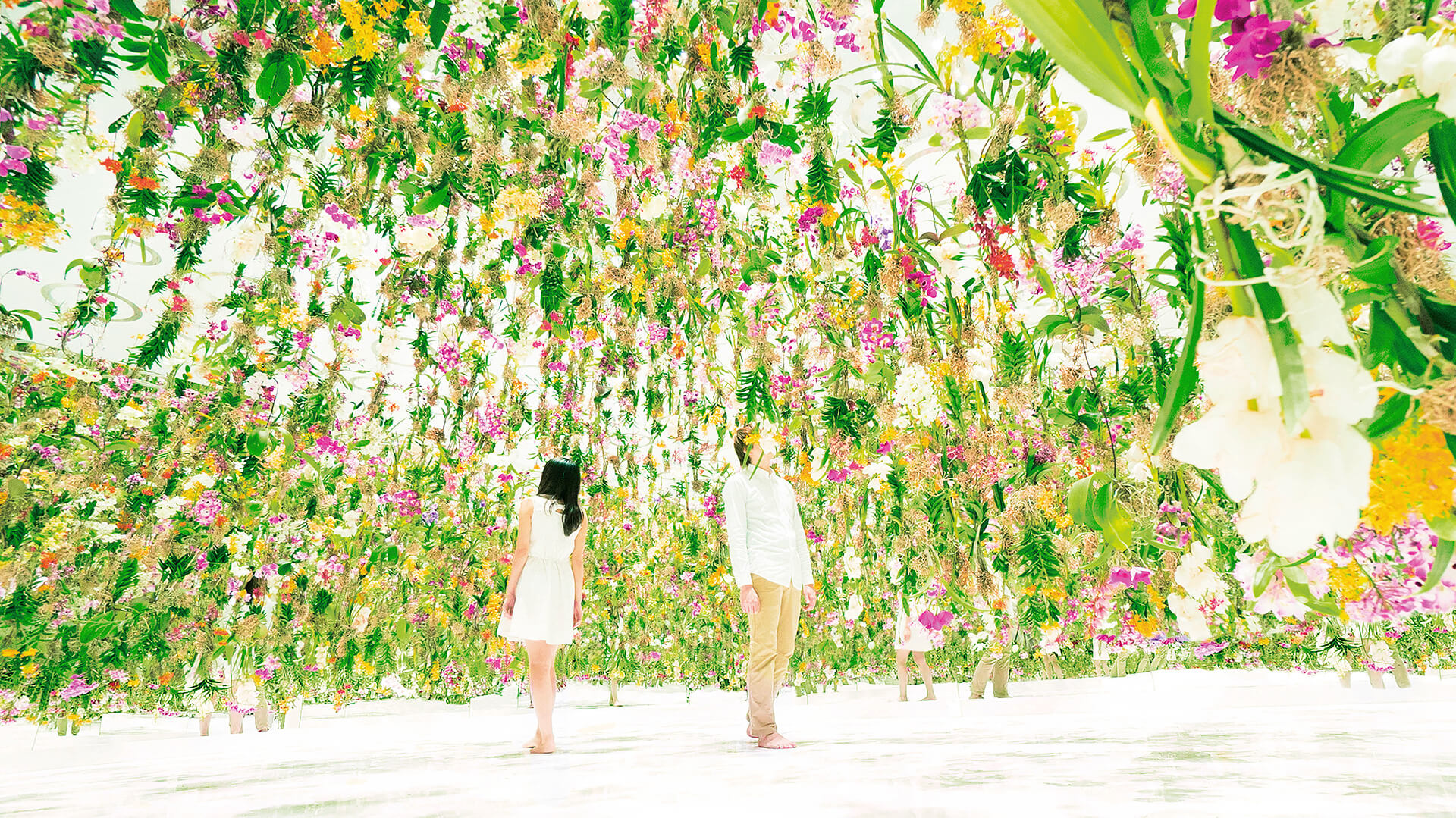 Floating Flower Garden, teamLab, 2015  | Cross Border Conversations | Space Popular X teamLab | STIR X LOCO Design