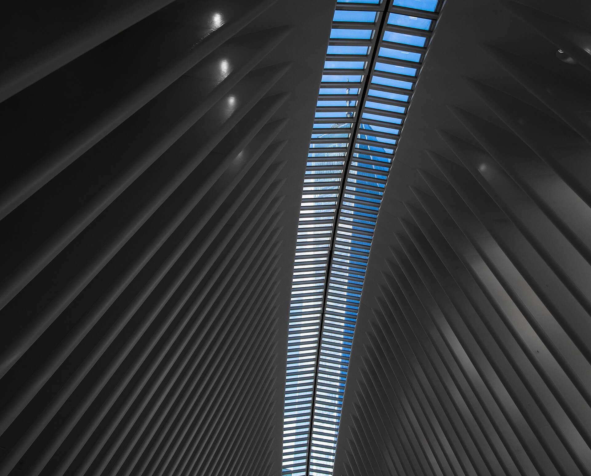 World Trade Centre Transportation Hub viewed through the ceiling window of the Oculus| Santiago Calatrava | STIRworld