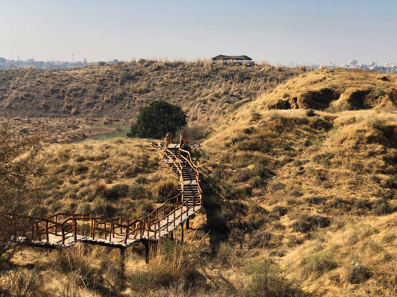 Winding staircases traversing the sandy 'marooned dunes' of Kishan Bagh | Cross Border Conversations | Pradip Krishen X Prof. Anne Feenstra | STIR X LOCO Design