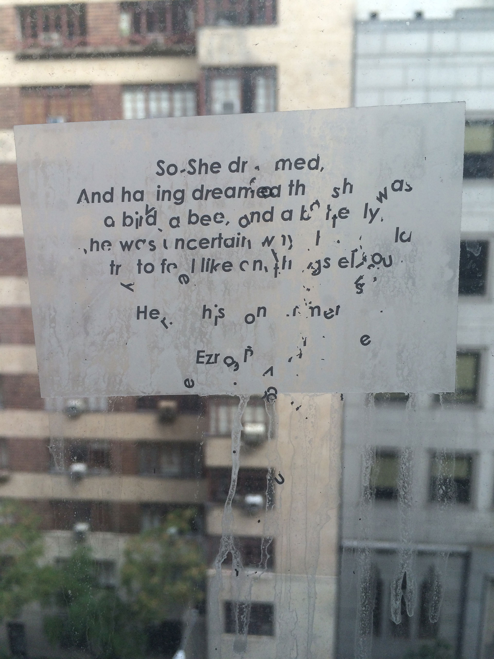 The poem pasted on artist's apartment in New York| Window Without a Wall| Vanita Gupta| STIR