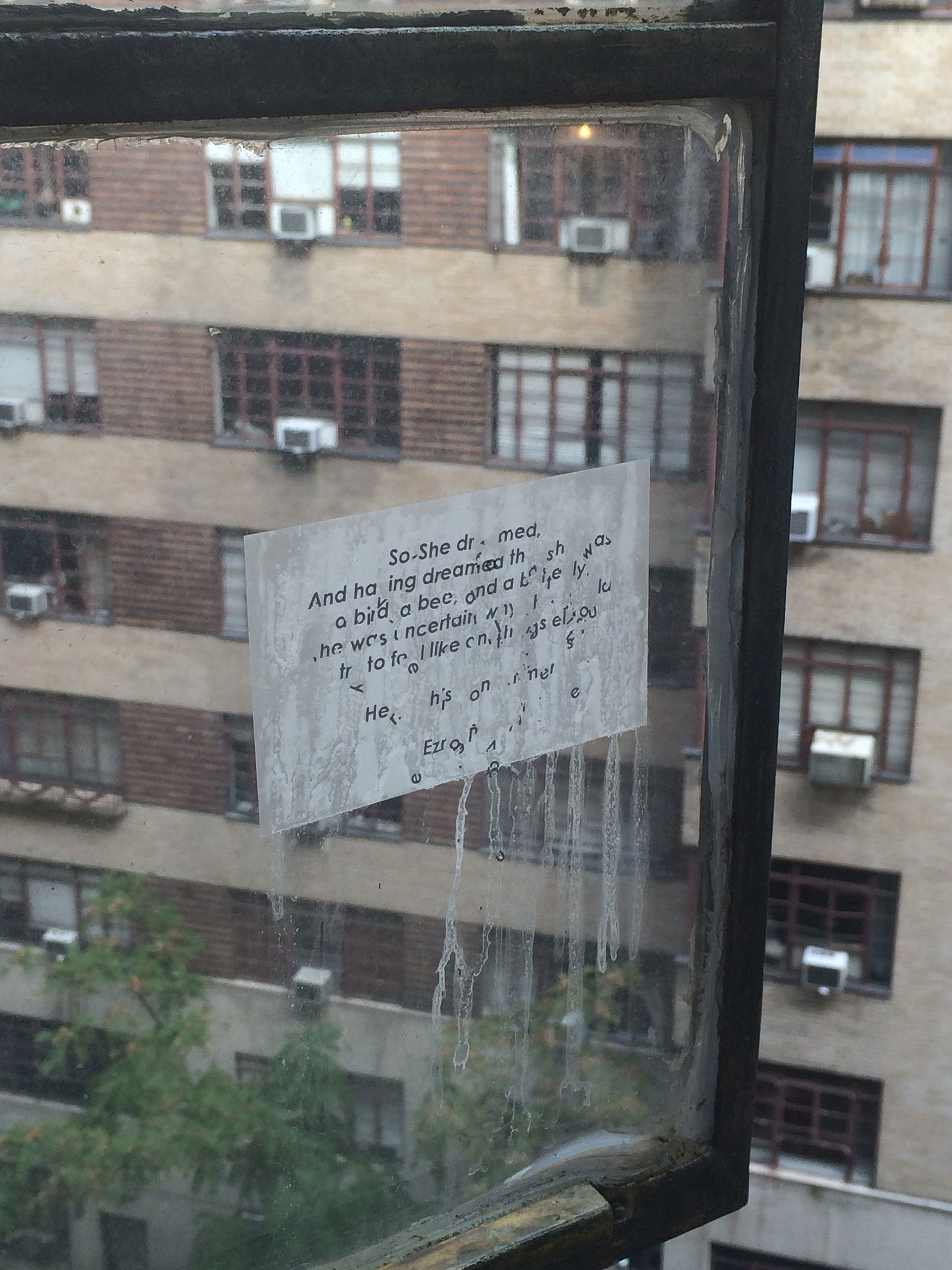 A view through the poem pasted on the window of artist's apartment| Window Without a Wall| Vanita Gupta| STIR