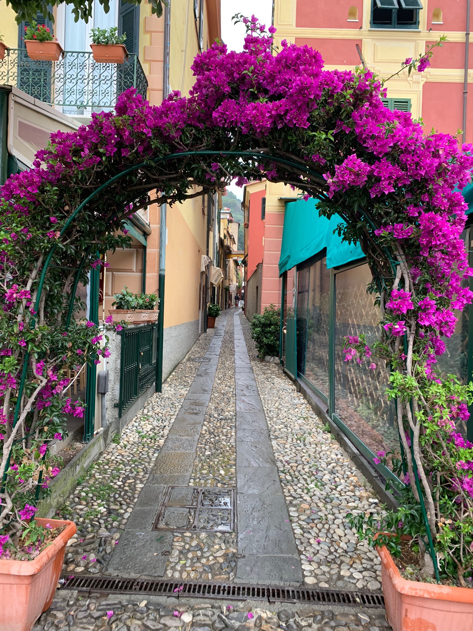 An arch adorned with bougainvillea| Cinque Terre| Italy| STIR