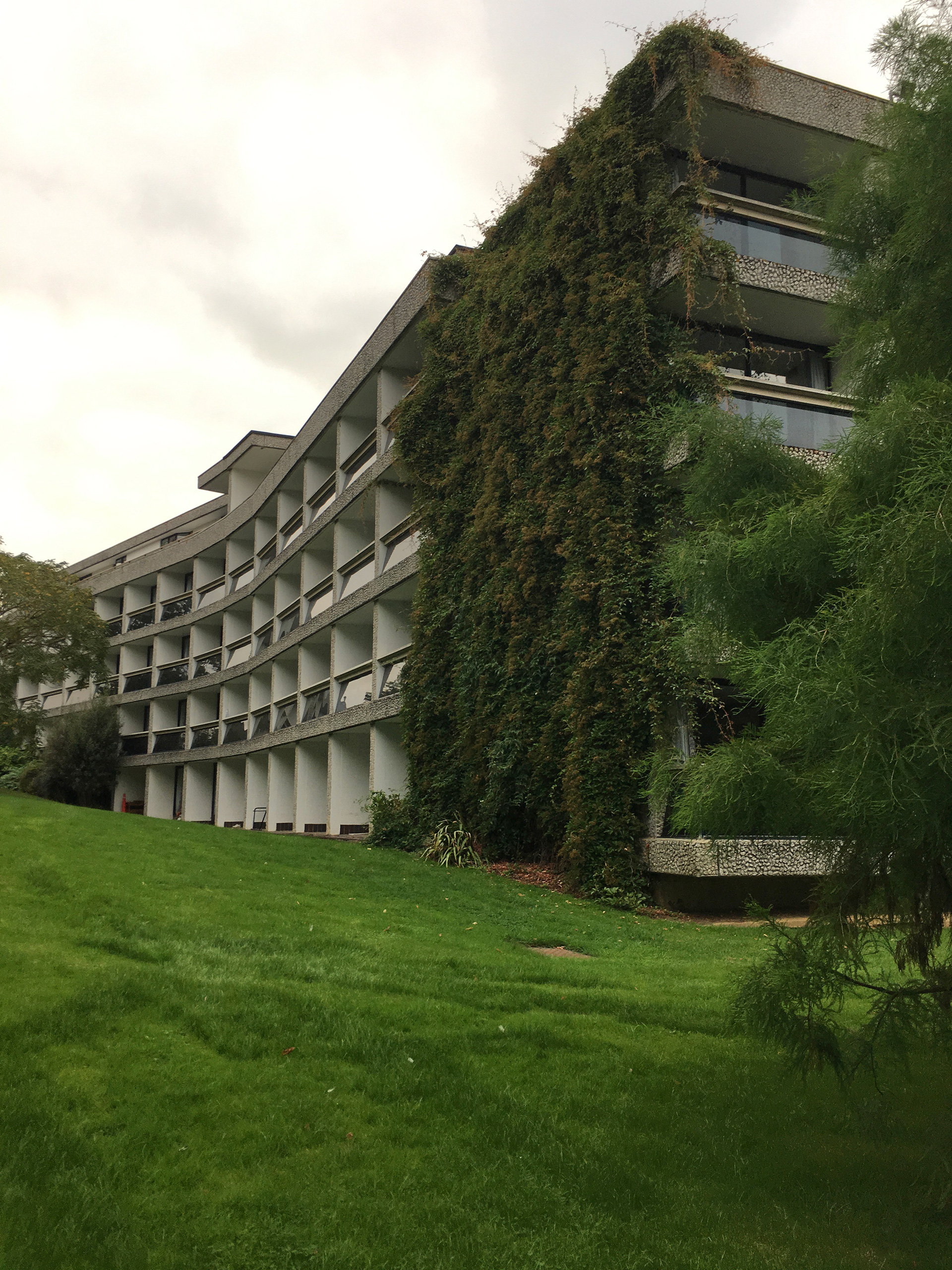 Looking up to the building from the Harbour - from before the time when green walls became fashion statements, a living breathing green wall  | Modernity in/as Heritage – The architecture of Wolfson College, Oxford | Amit Khanna | STIR