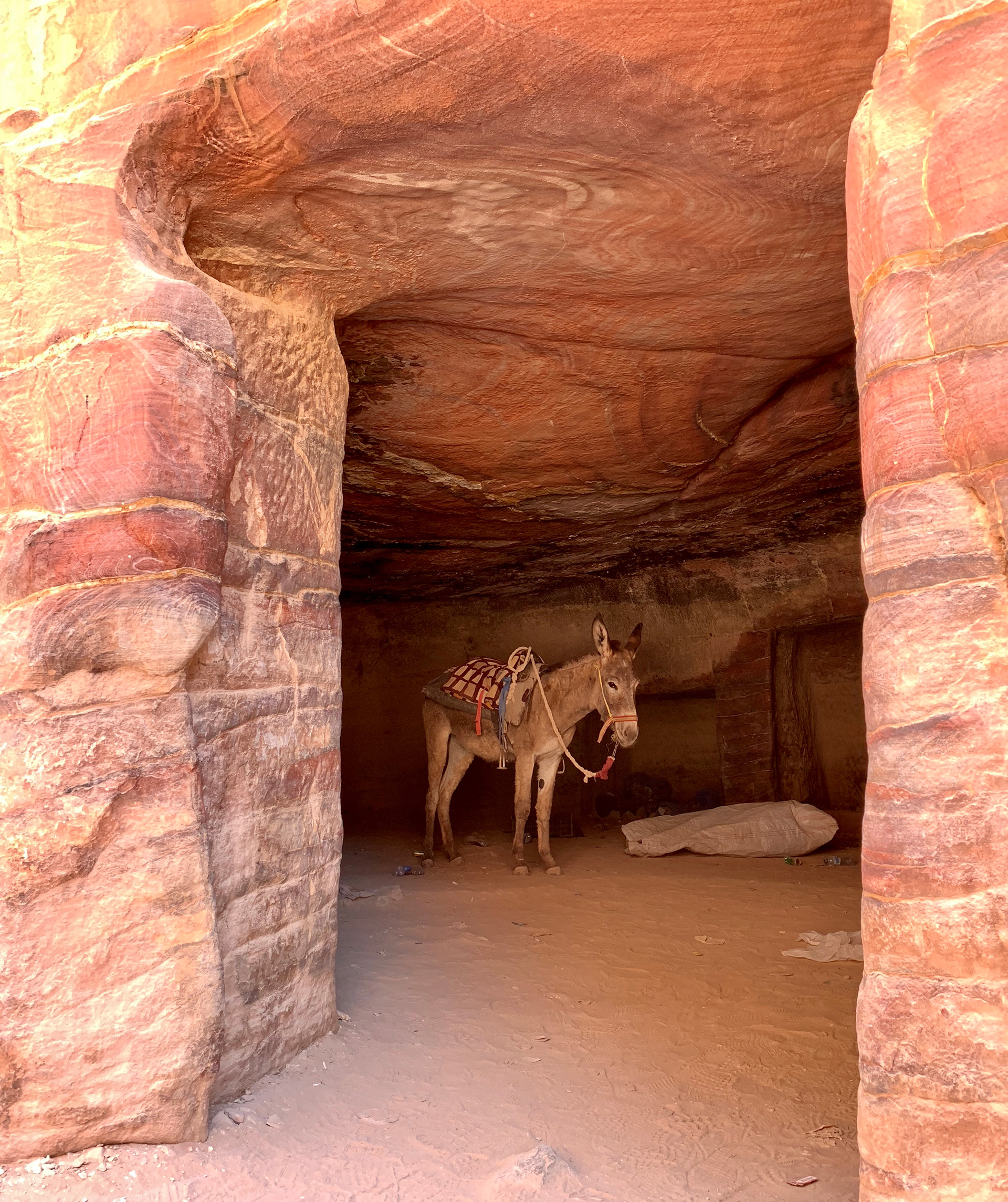 Rides are provided on donkeys to travel up and down the terrain | Petra, Jordan | Sandeep and Tania Khosla| STIRworld