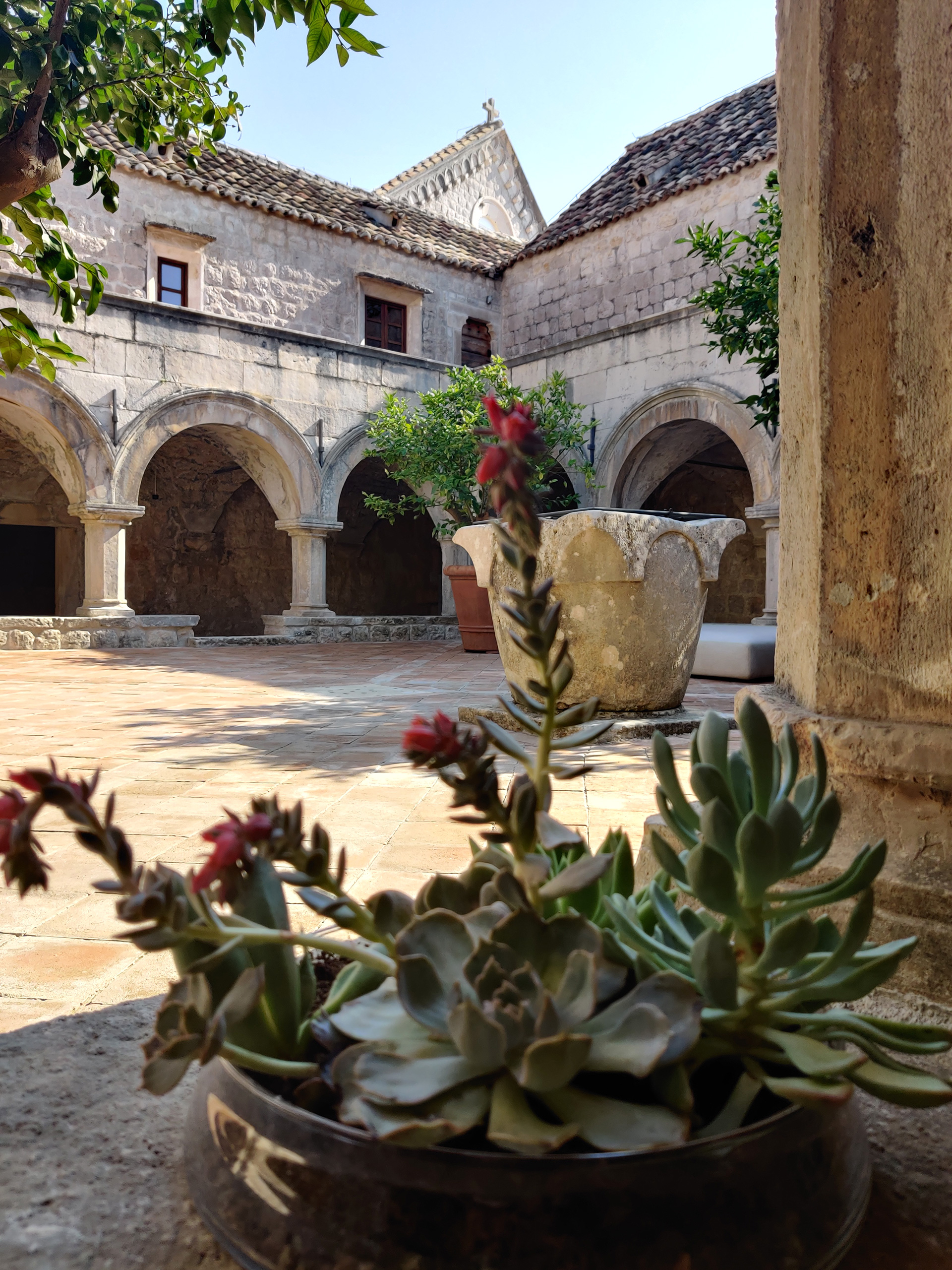 Cloister at the Franciscan Monastery | Dubrovnik, Croatia | STIRworld