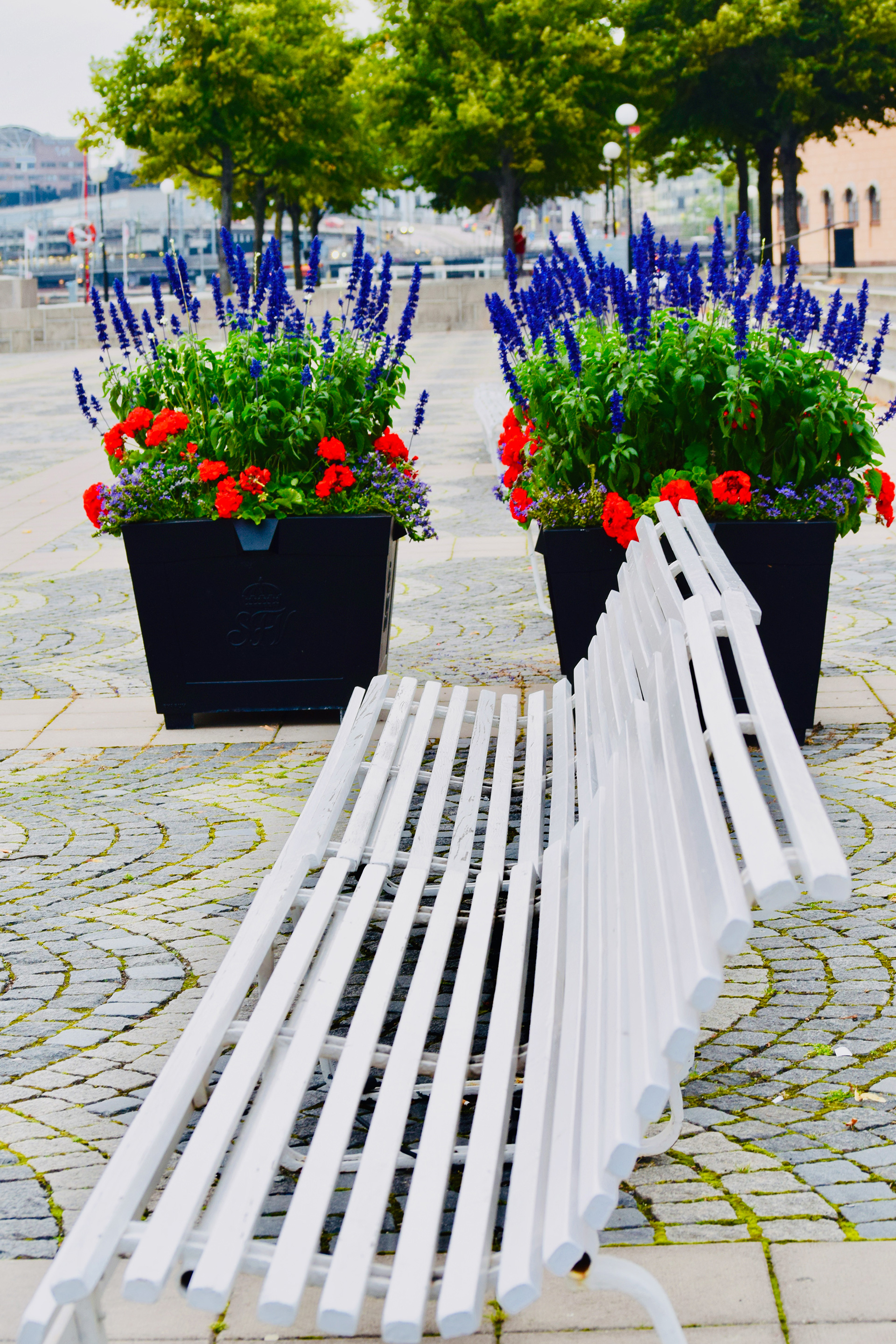 Blooms and benches along the city's many promenades | Helsinki | Finland| STIRworld