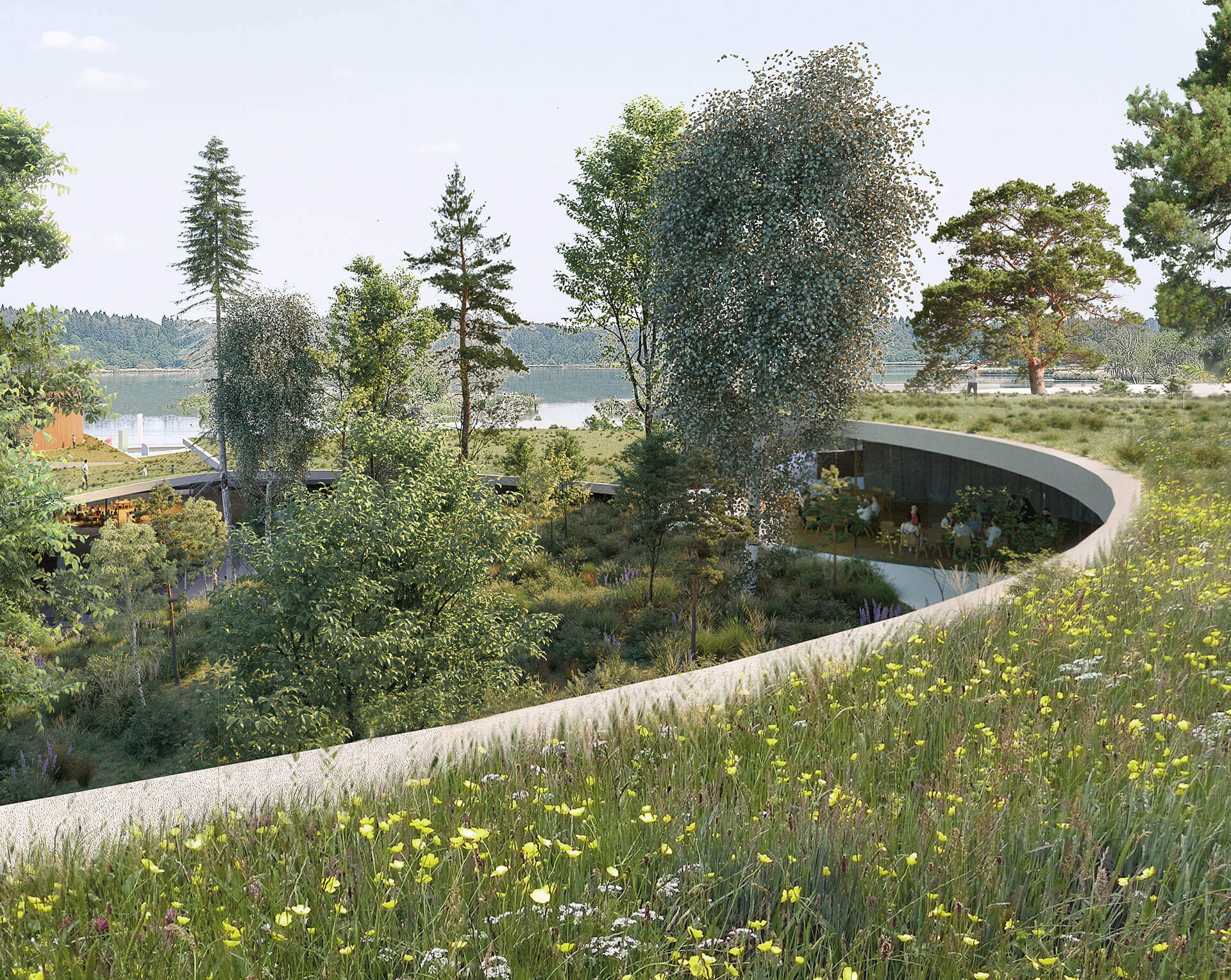 Roofs form a path between the shore and the forest | New Senezh Management Lab | CHYBIK+KRISTOF | STIRworld